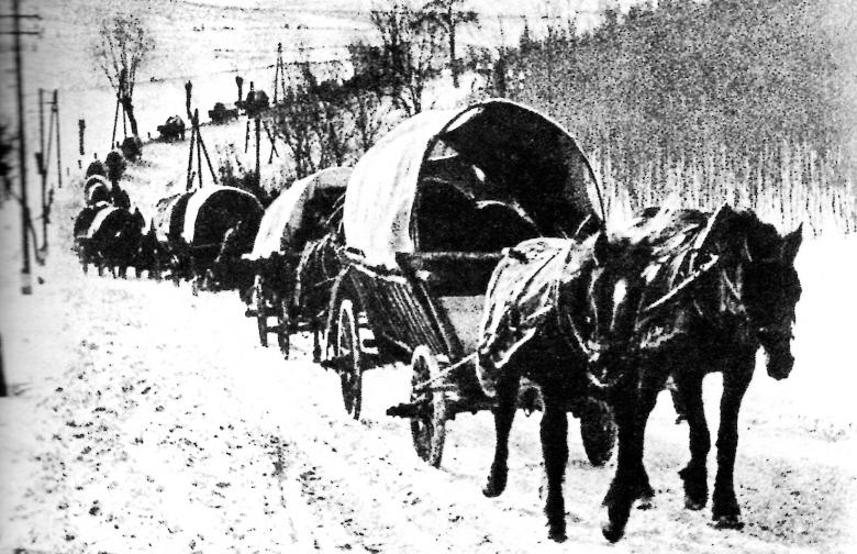 Flucht in eisigem Winter: Kilometerweit zogen die Trecks aus den verschiedenen Gegenden Ostpreußens in der Hoffnung auf Rettung in Richtung Meer